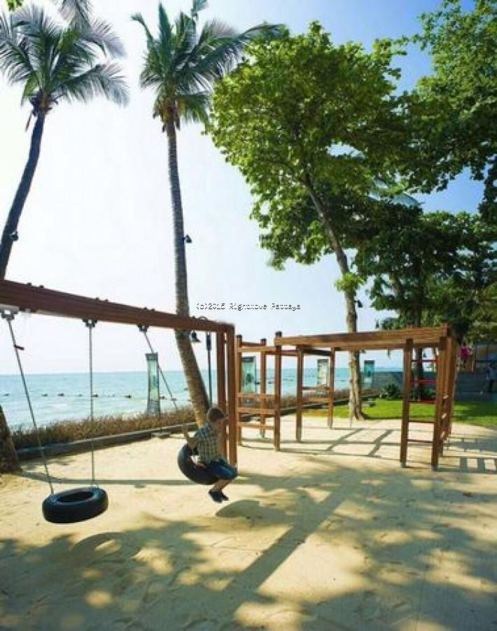 studio condo in wongamart naklua for rent zire  to rent in Wong Amat Pattaya