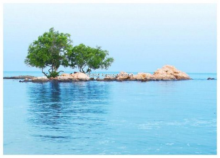 pic-5-Rightmove Pattaya 1 bedroom condo in wongamart naklua for sale the cove   for sale in Wong Amat Pattaya