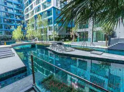 1 Bed Condo For Rent In Jomtien - Acqua