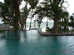 1 Bed Condo For Sale In Wongamat - Zire